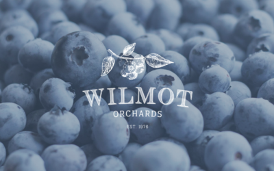 Wilmot Blueberry Orchard